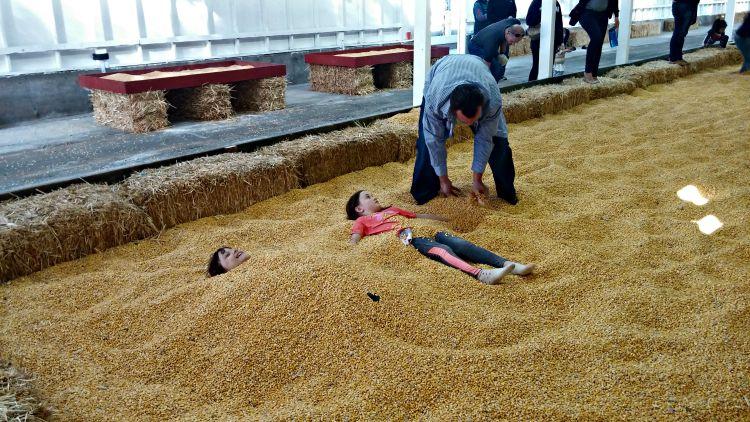 Carpinito Corn Pit