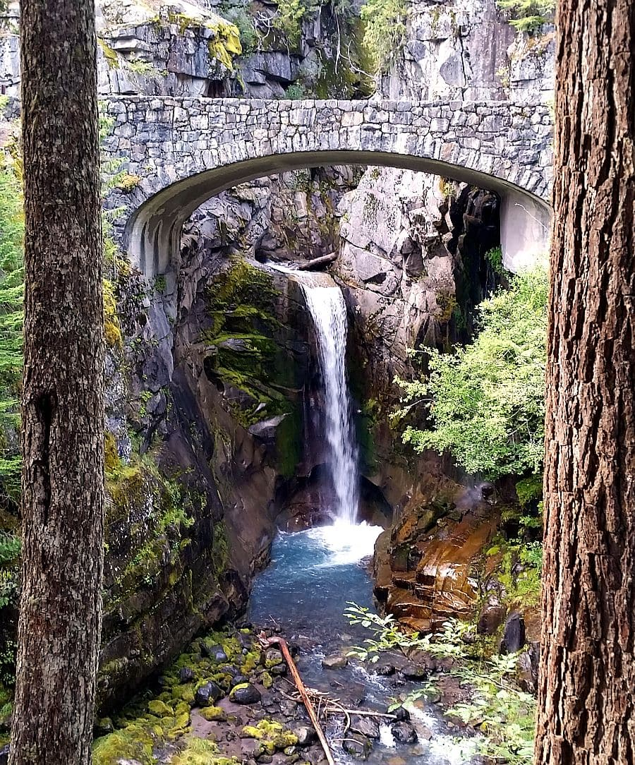 Christine Falls at Mount Rainier is a quick walk off the highway but so worth it for the views you'll find under the highway!