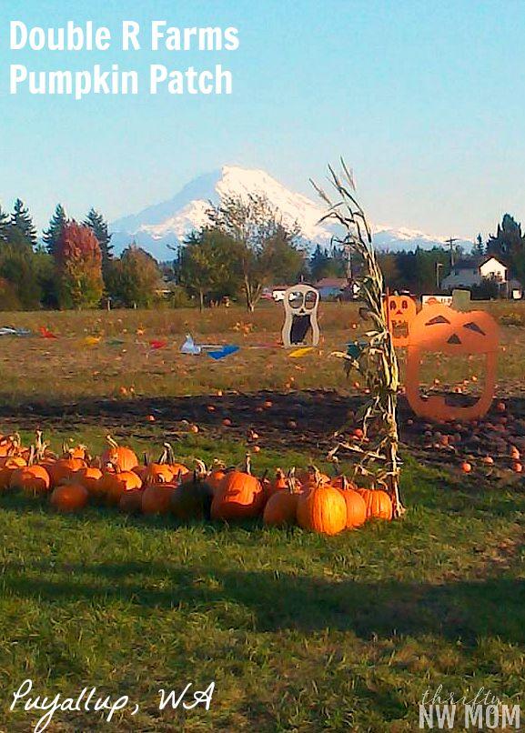 Double R Farms Pumpkin Patch – Puyallup, WA