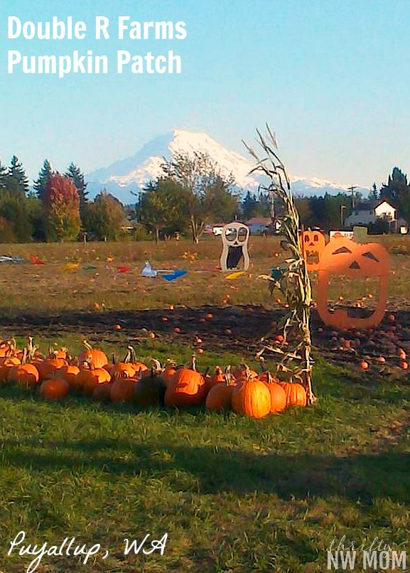 Double R Farms Pumpkin Patch