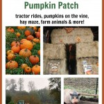 Hunter Farms Pumpkin Patch