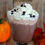 Starbucks Hot Chocolate Copycat Recipe – Quick & Easy to Make at Home for a Fraction of the Cost!