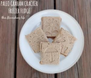 graham-cracker-fudge-1024x883