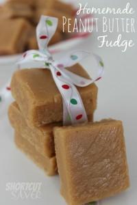 homemade-peanut-butter-fudge-620x930