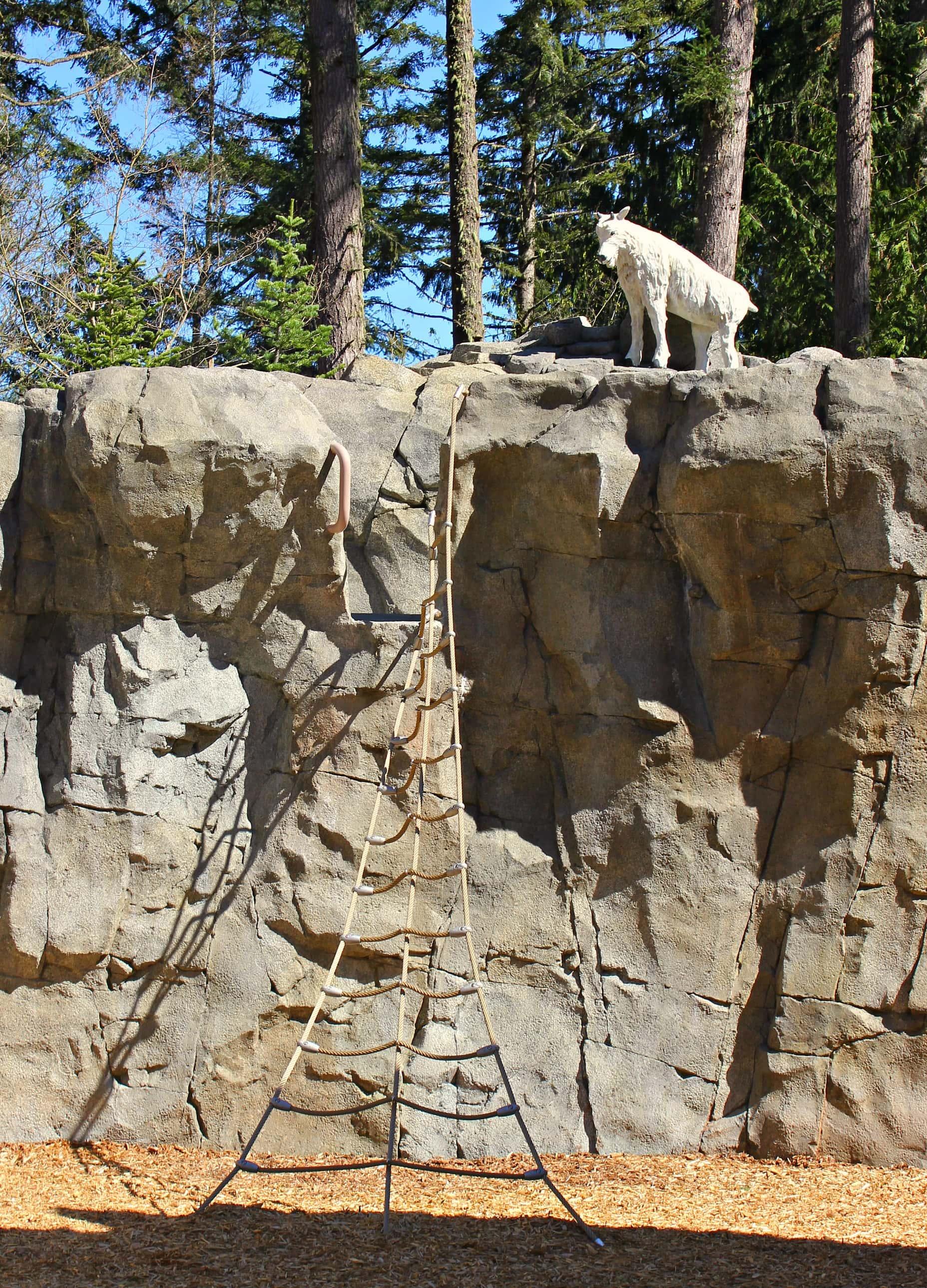 Climbing Area at Kids Trek