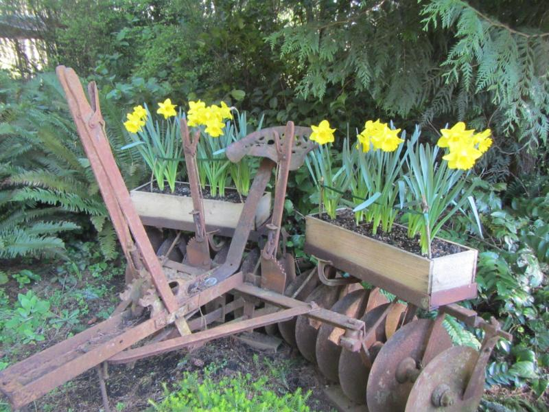 Old Machinery for flowers
