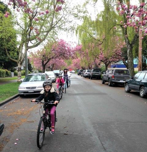 Victoria Bike Tour