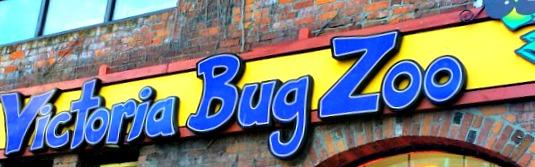 Victoria-Bug-Zoo