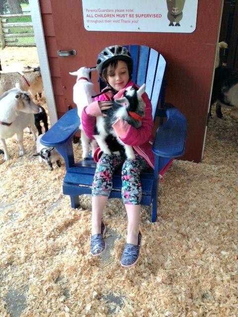 victoria petting zoo