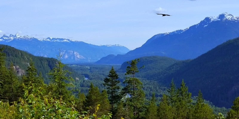 One of the many beautiful views of the water & Coast Mountains on the Sea to Sky Highway near Whistler BC
