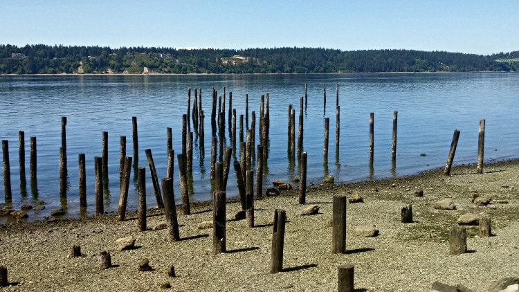 Titlow beach 1