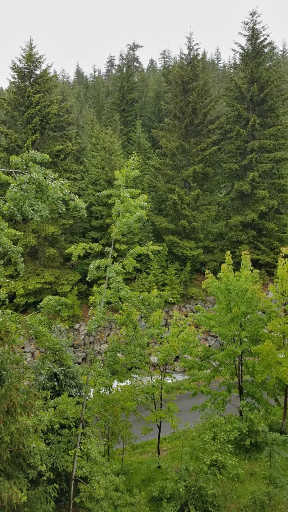 View from the Legends Creekside at Whistler