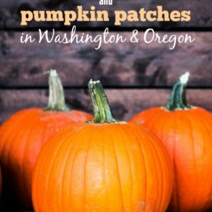 Check out this list of Pacific Northwest Fall Festivals and Pumpkin Patches for family fun in Washington & Oregon.