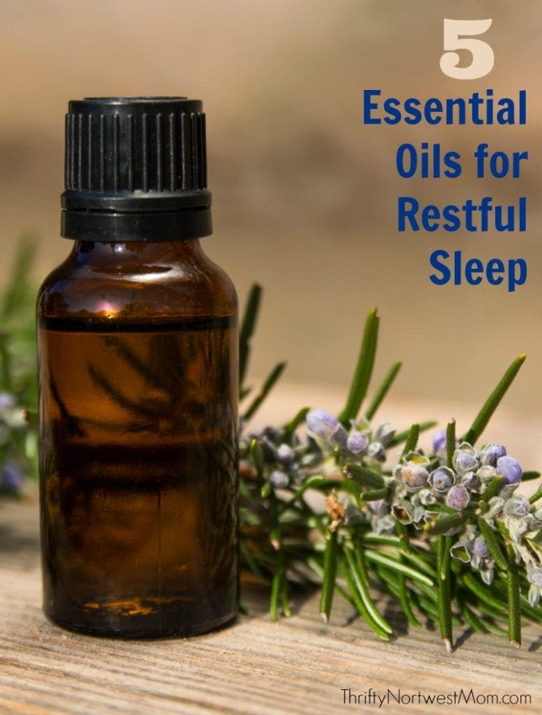 Essential Oils for Sleep - Check out these 5 best Essential Oils for restful sleep