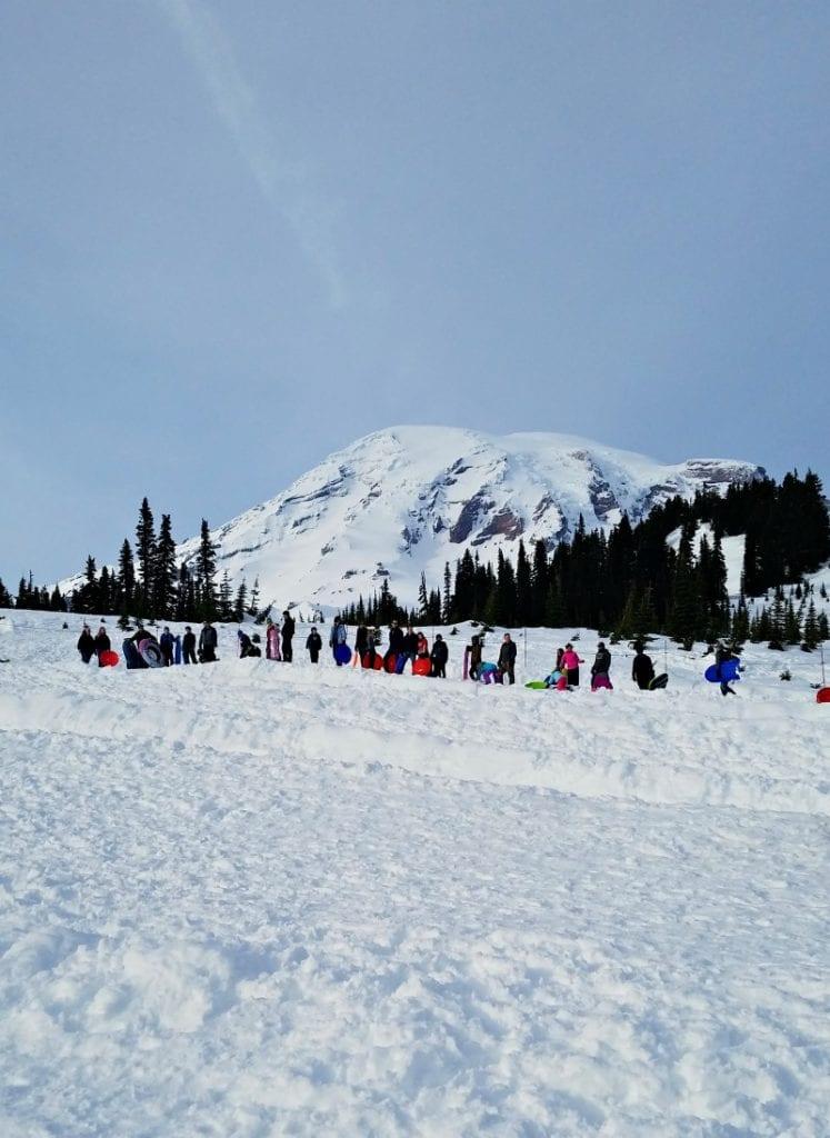 Mt Rainier Sledding Runs