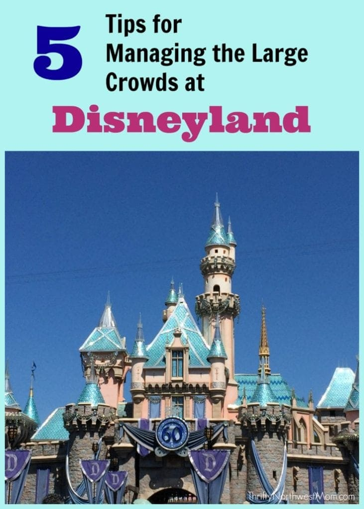 Disneyland Crowds – 5 Tips for Managing the Large Crowds On Your Visit