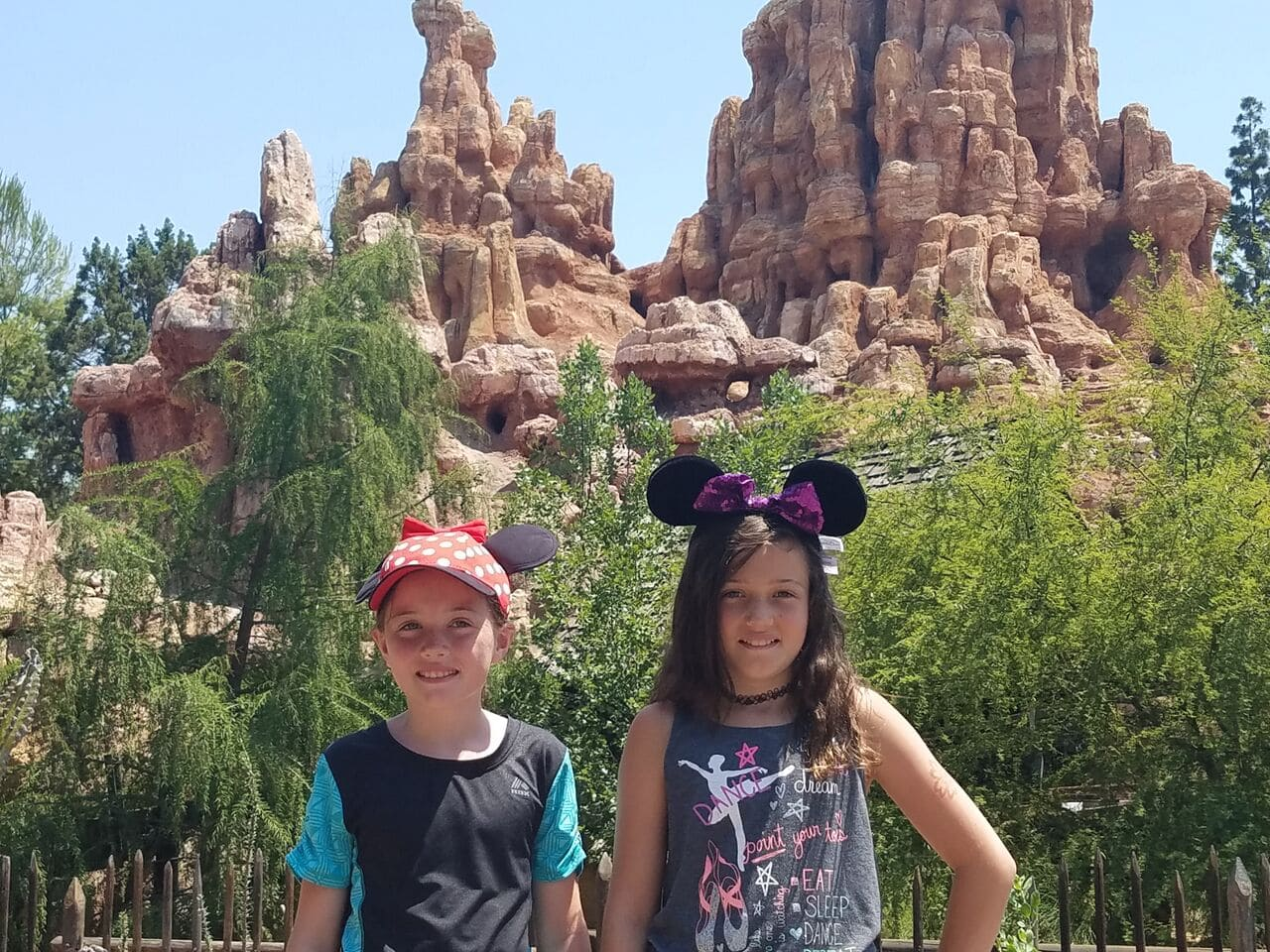 Disneyland in the summer