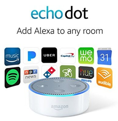 Amazons Echo Dot sale