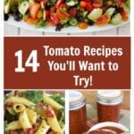 Tomatoes: Recipes for the Tomato Lovers – Everything from Stuffed Tomatoes, Sun Dried Tomato Meatballs & more!