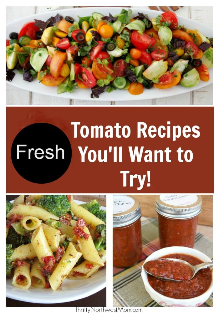 Fresh Tomato Recipes for the Tomato Lovers – Simple & Healthy Meals You Will Love!