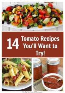 Tomatoes: Recipes for Tomato Lovers