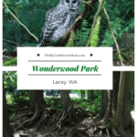 Wonderwood Park Review in Lacey WA