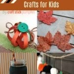 15+ Fall Crafts for Kids To Use Around Your Home