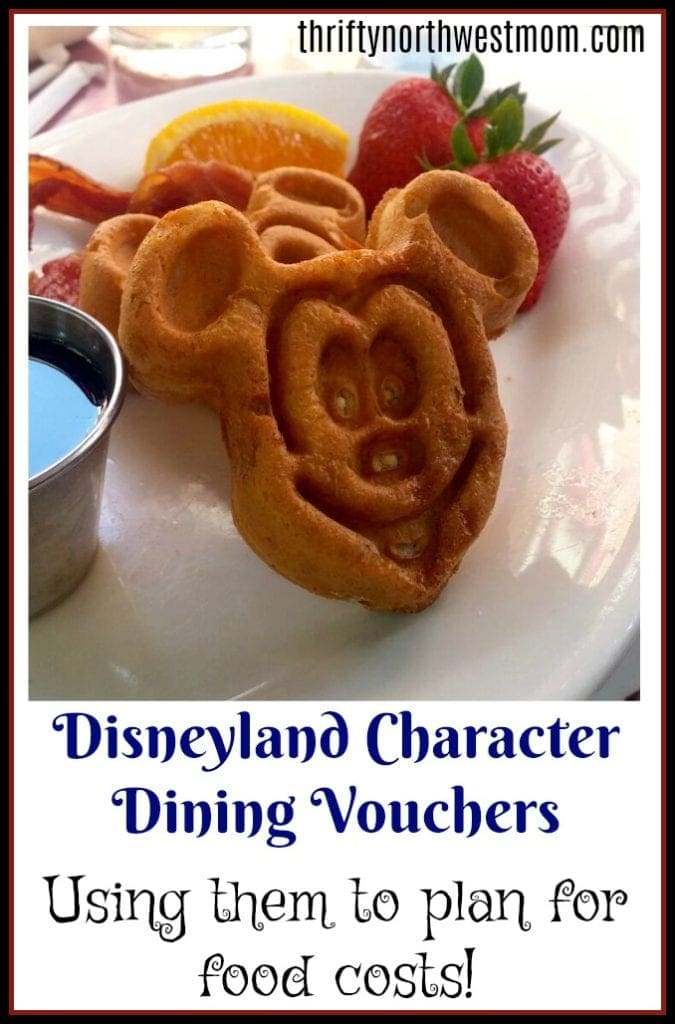 Disneyland Food Vouchers – How To Use Them To Plan for Food Costs