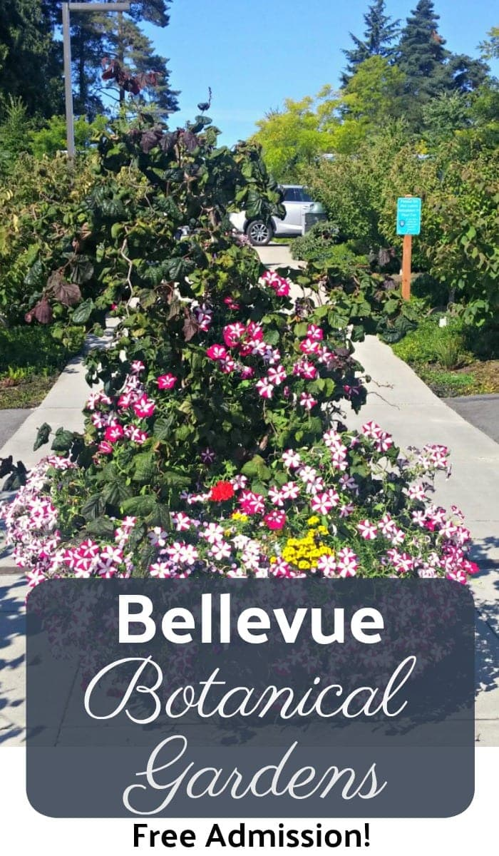 bellevue botanical gardens free to visit