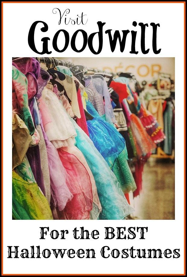 Goodwill Halloween Costume Inspiration + Largest Goodwill Halloween Store!