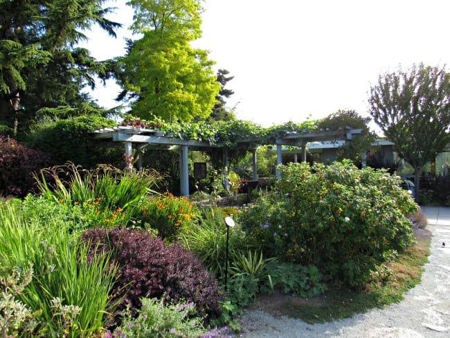 Bellevue botanical gardens arbors