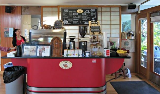 coffee shop at Bellevue Botanical Garden