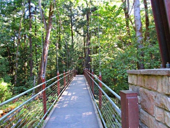 Suspension bridge at Bellevue botanical garden