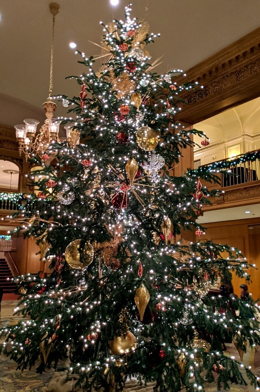 Christmas Tree at Fairmont Olympic in Seattle