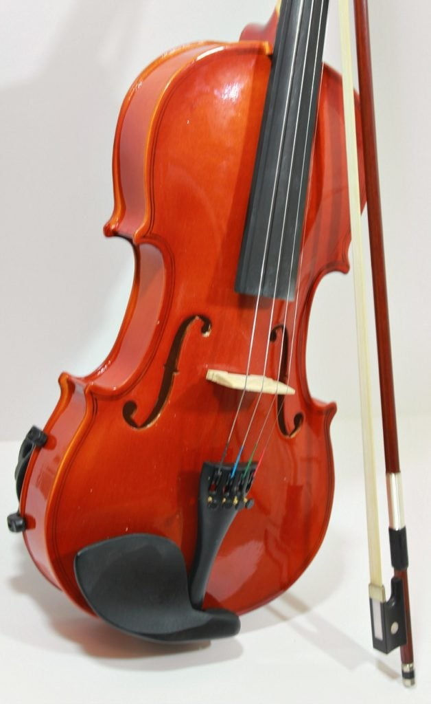 Purchasing a violin on the ShopGoodwill.com site