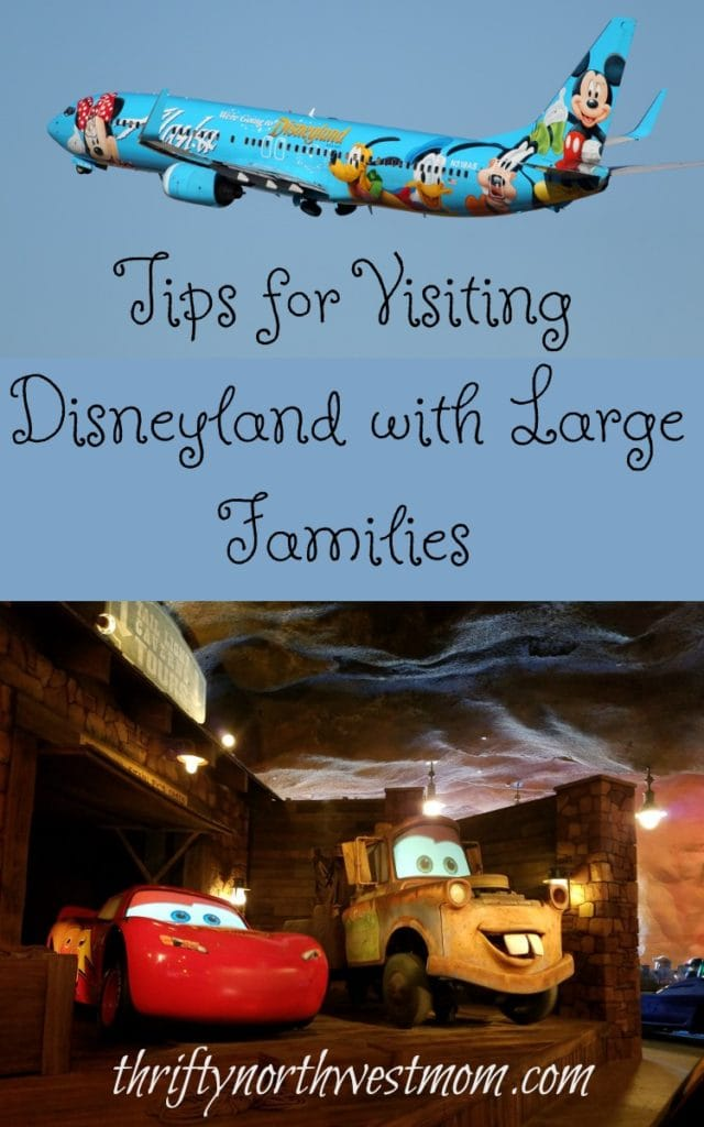Tips for Visiting Disneyland with Large Families