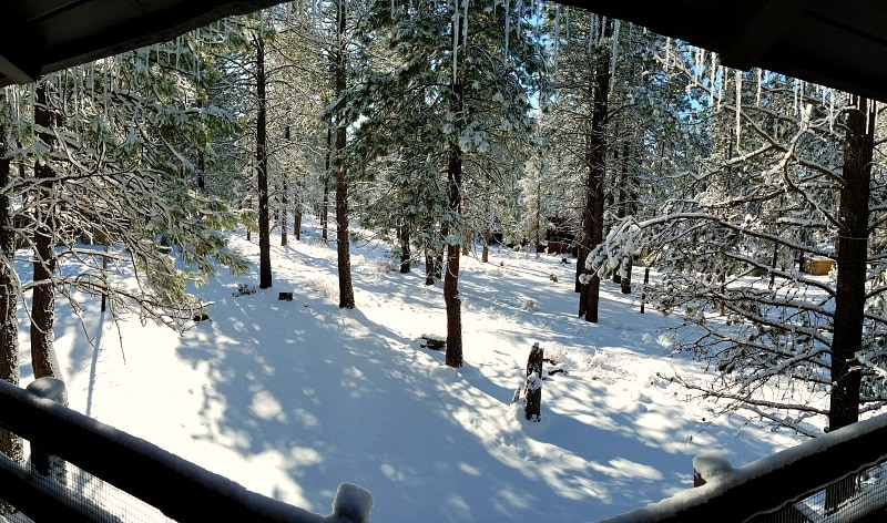 Panaromic Views of the Back Yard from the Upper Deck of Sunriver vacation home