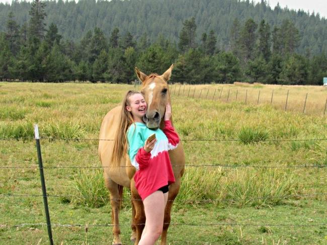 horse stables sunriver