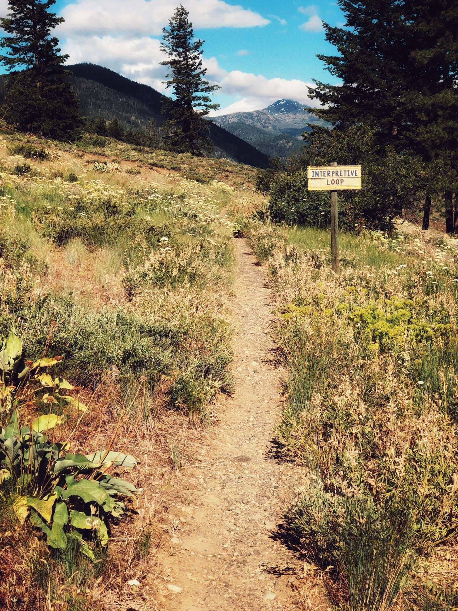 Hiking Trails winthrop Wa