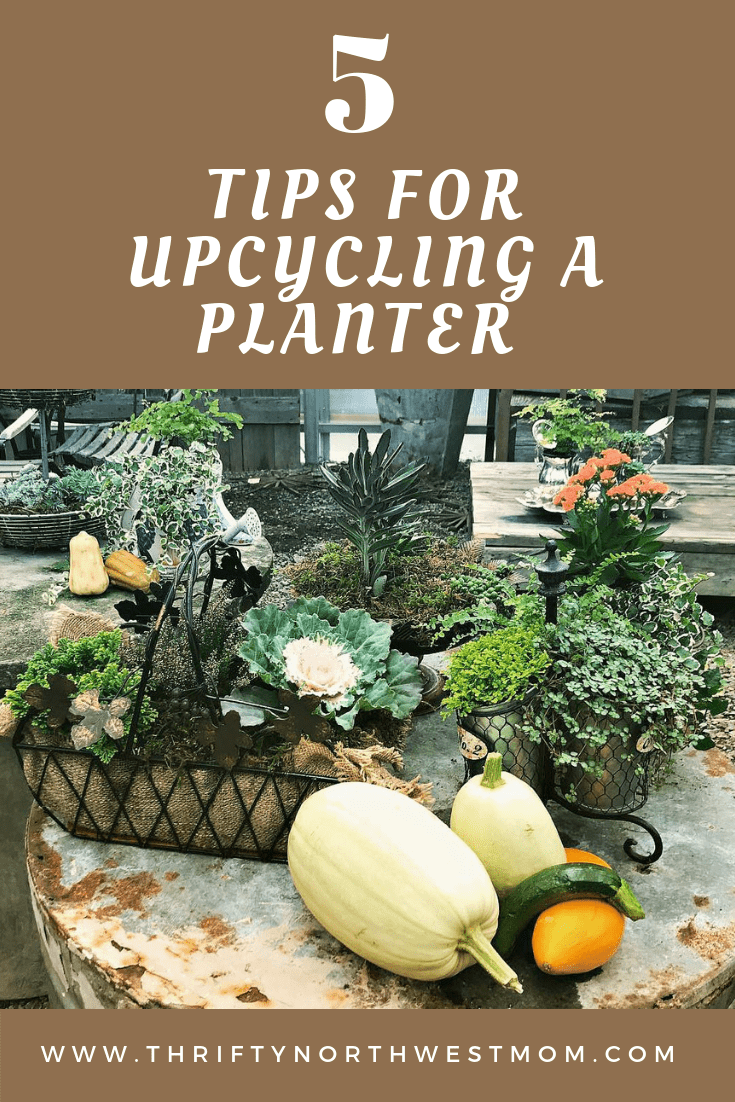 Upcycling a Planter using Thrift Store Finds