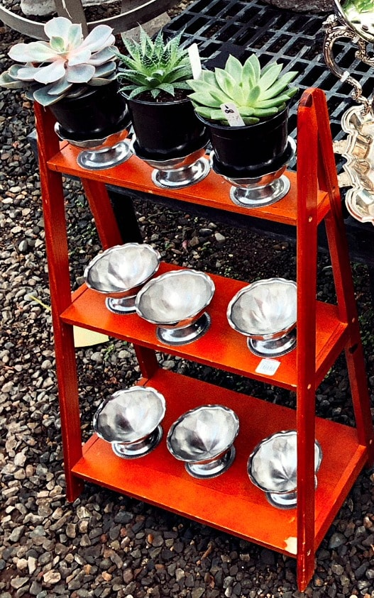 Before picture of Shelf & Dessert Cups for Planter