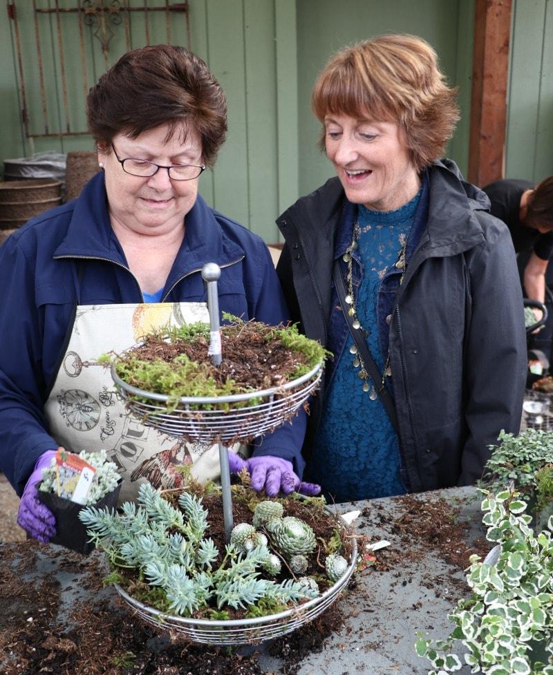 Fruit Basket turned Planter