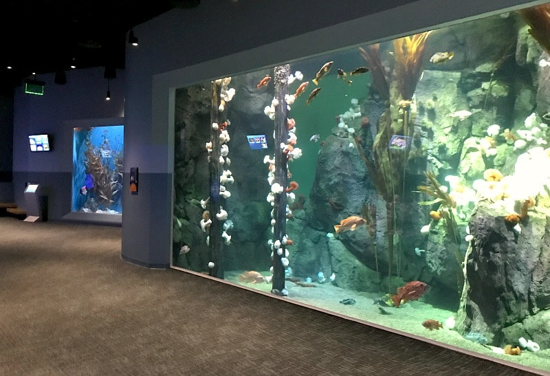 Northwest Waters Exhibit at PDZA