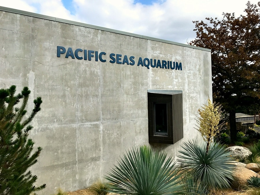Pacific Seas Aquarium at Point Defiance Zoo