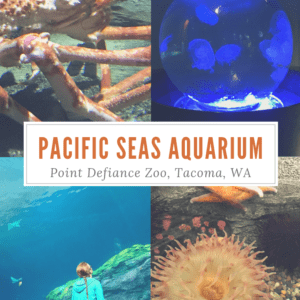 Pacific Seas Aquarium at the Point Defiance Zoo