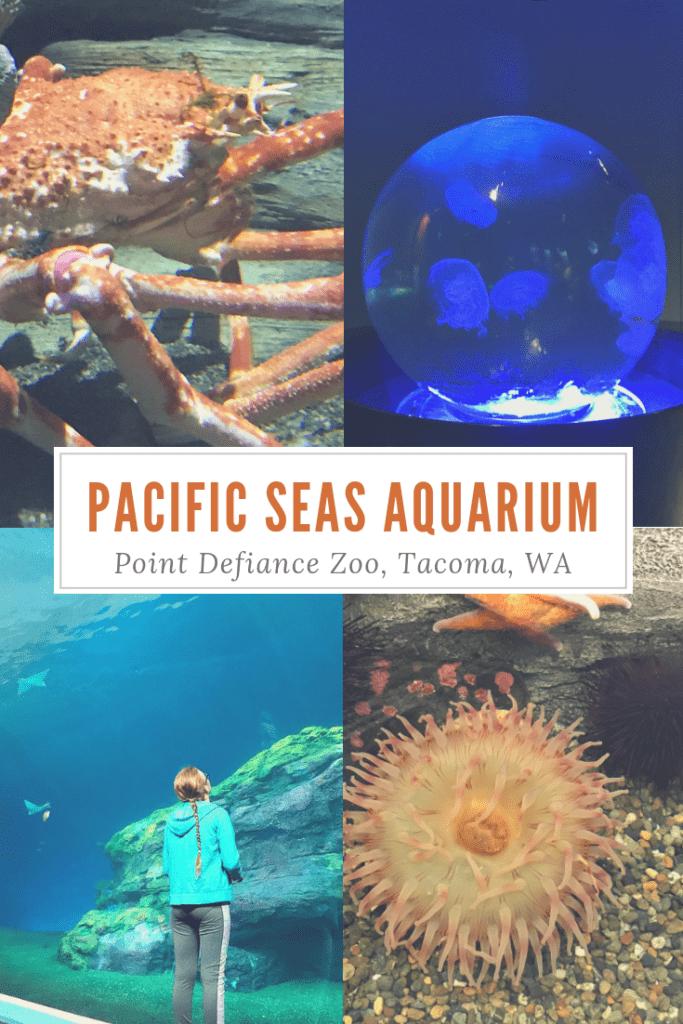 Pacific Seas Aquarium – Point Defiance Zoo in Tacoma WA  – Kid Friendly & Ways to Save!