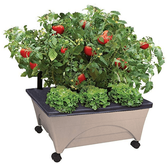 Patio Raised Garden Bed Grow Box Kit