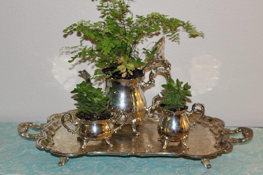 Tea Set Planter