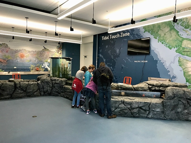 Tidal Touch Zone at Pacific Seas Aquarium