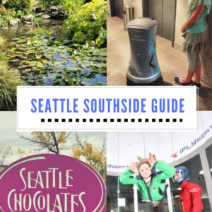 Seattle Southside Guide